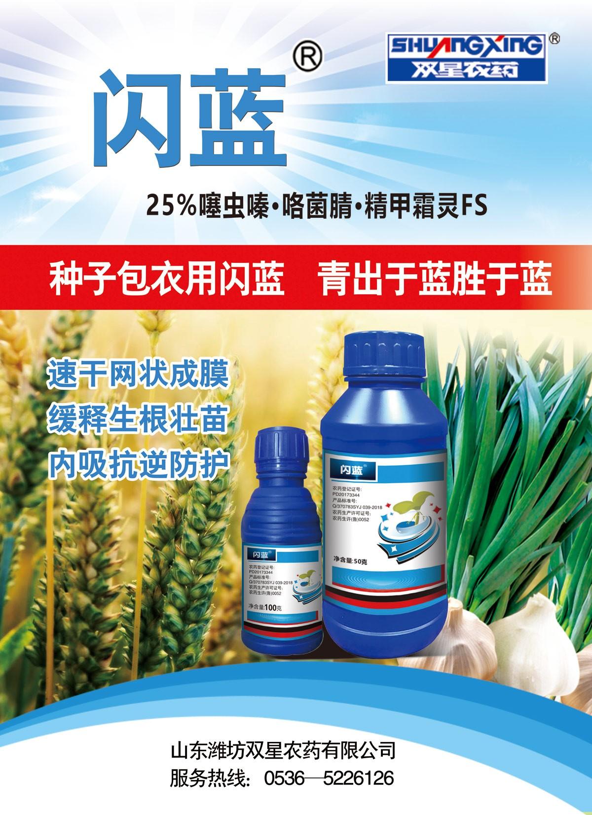 闪蓝海报(大蒜、小麦)58.6-80.jpg