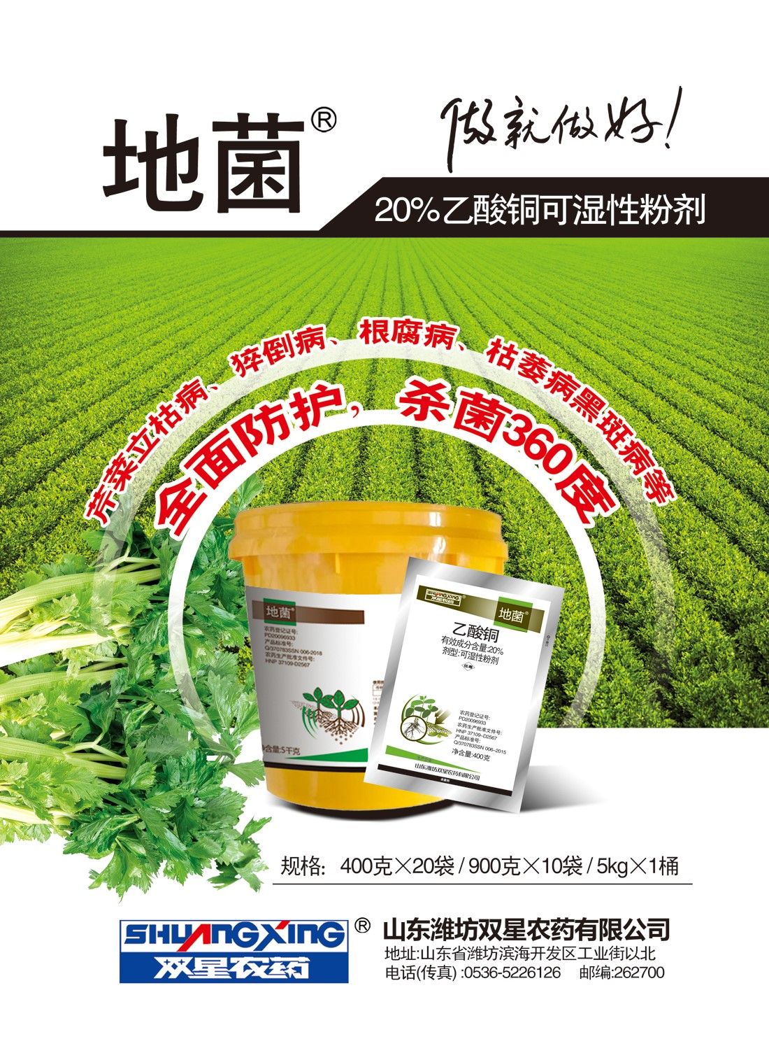 地菌芹菜A4页正.jpg