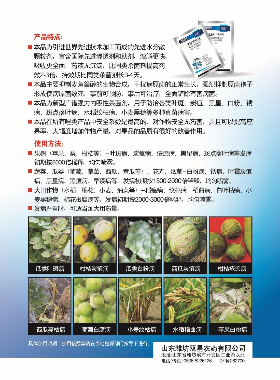 世蓝(西瓜)A4单页反.jpg