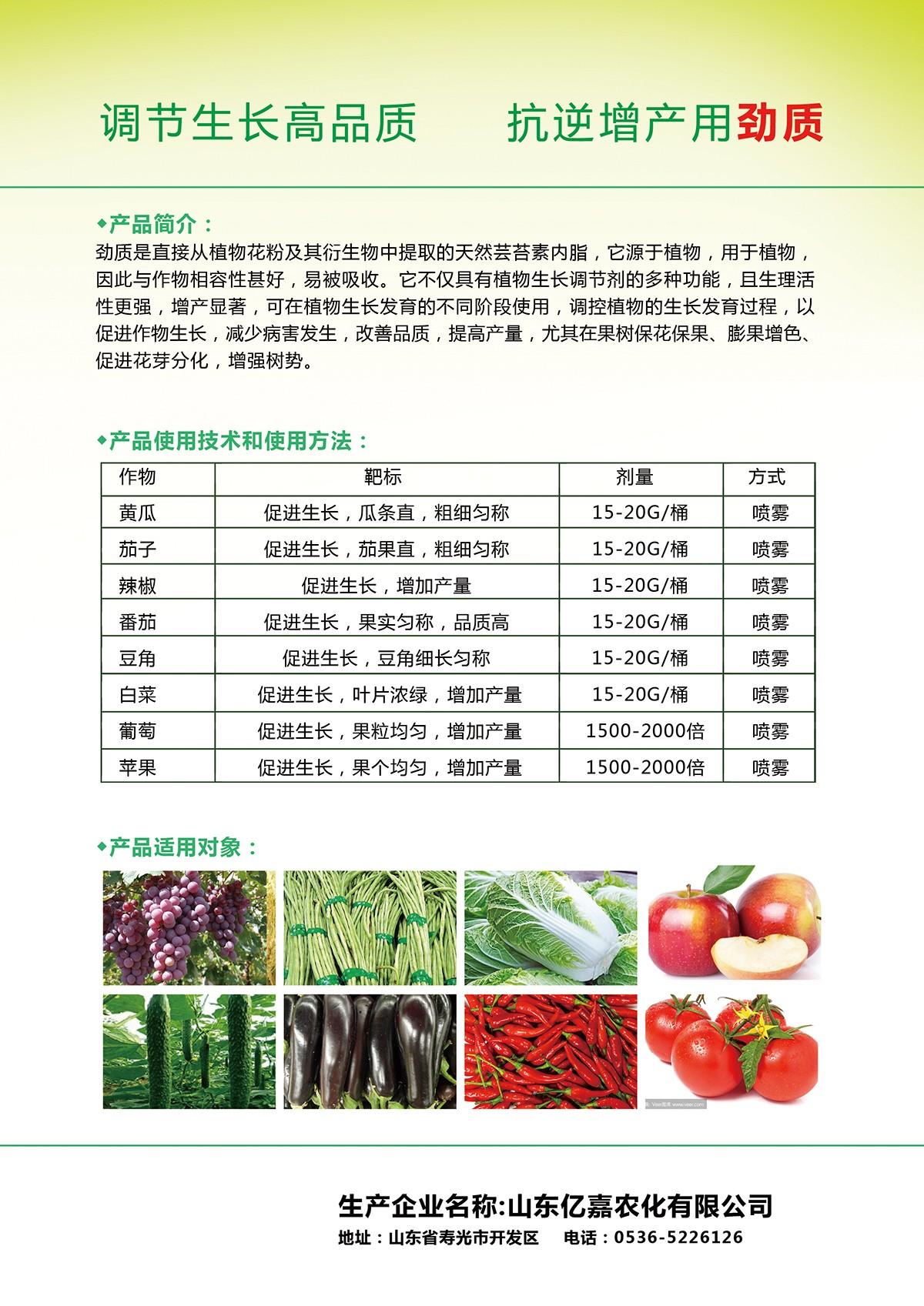 劲质单页反面-蔬菜.jpg