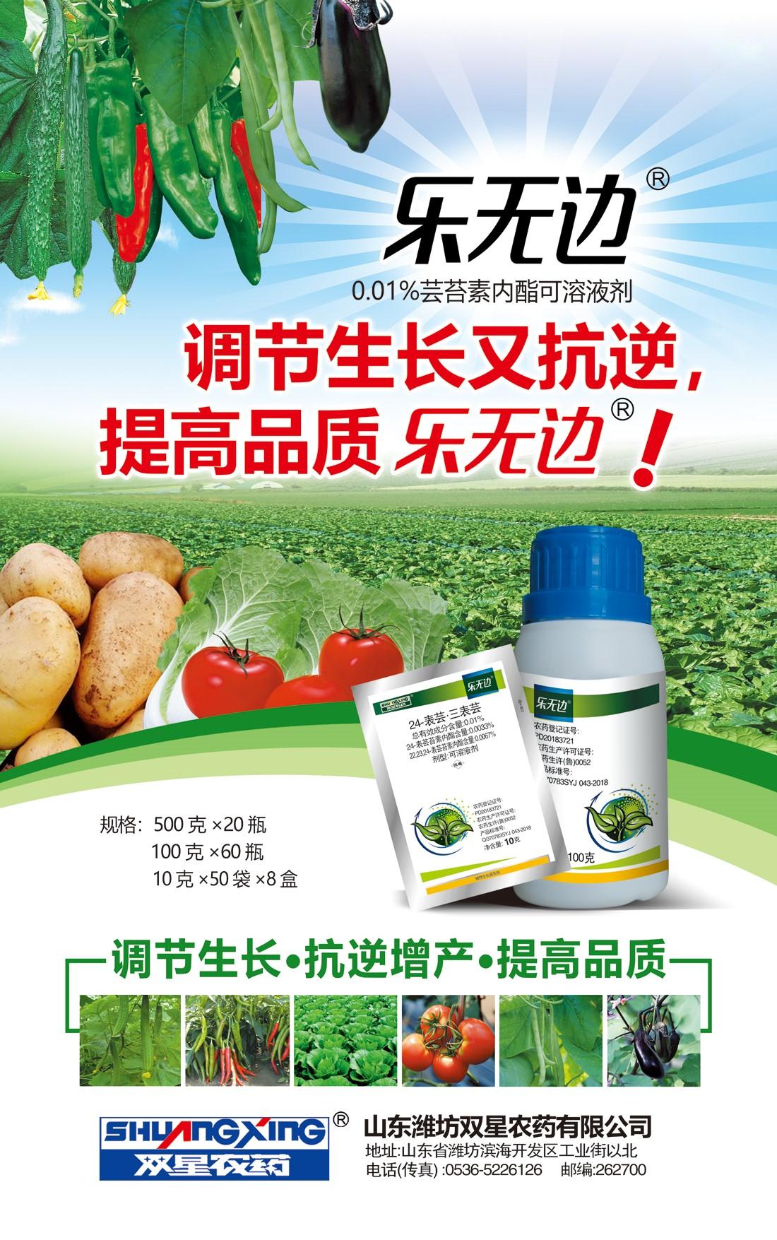 乐无边(蔬菜)海报.jpg