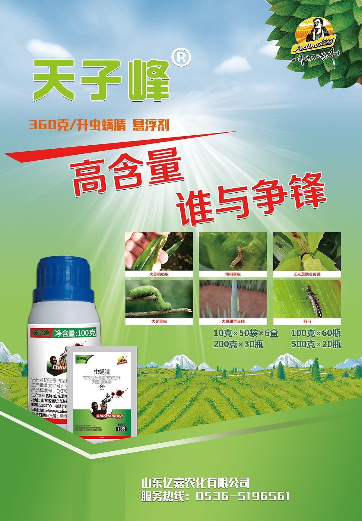 天子峰宣传页2.jpg