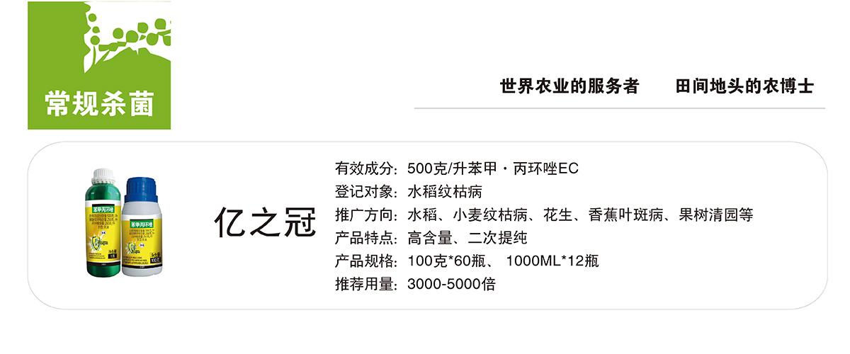 亿之冠.jpg